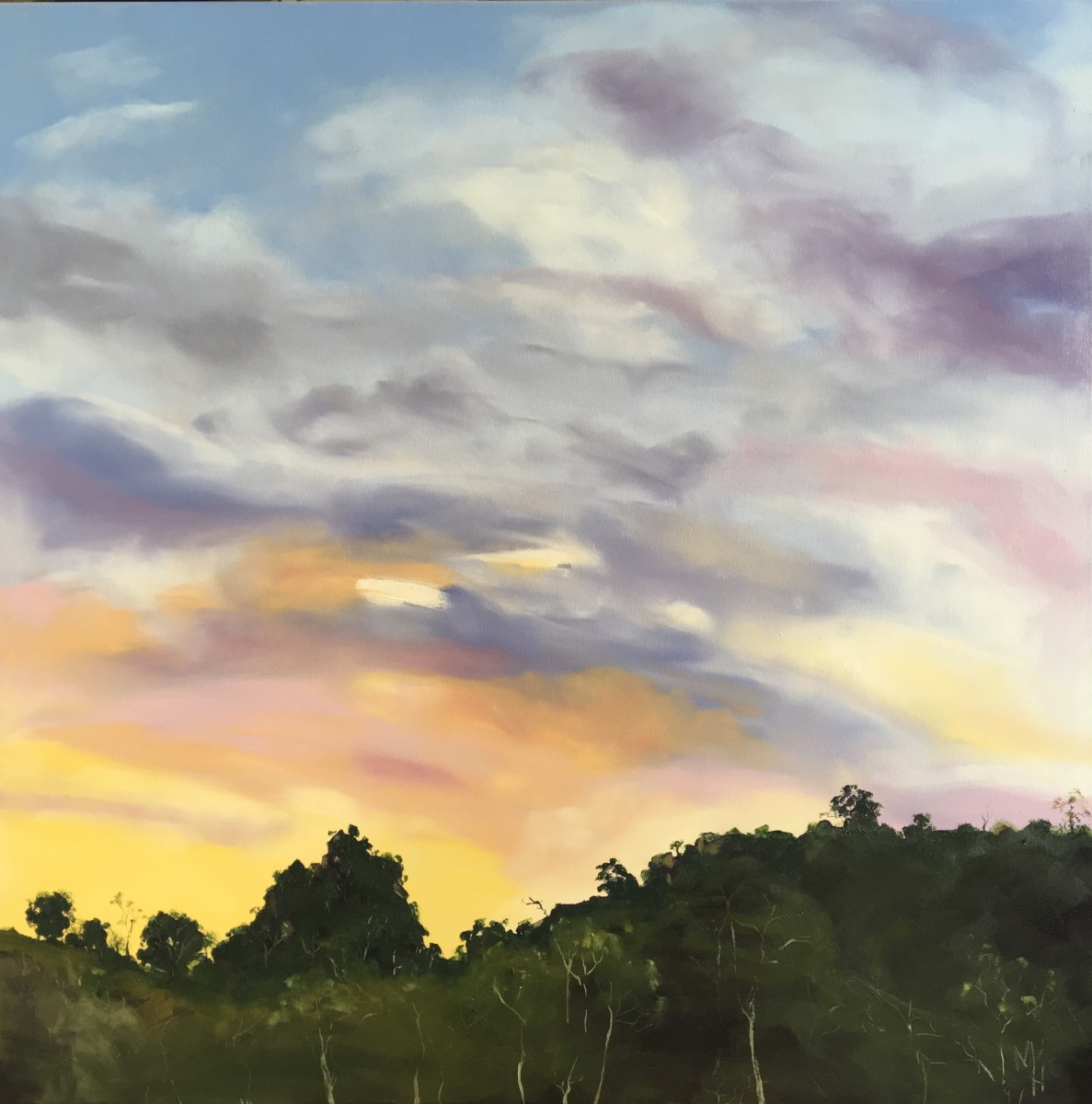Sunset at Adelong by Meredith Howse