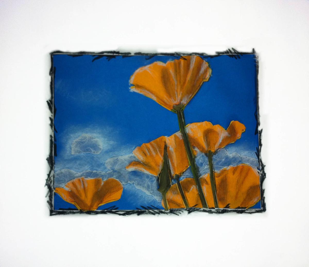 California Poppies by Kathy Ferguson