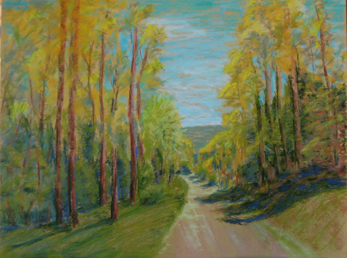 Forest Road Stroll by Charles Stup