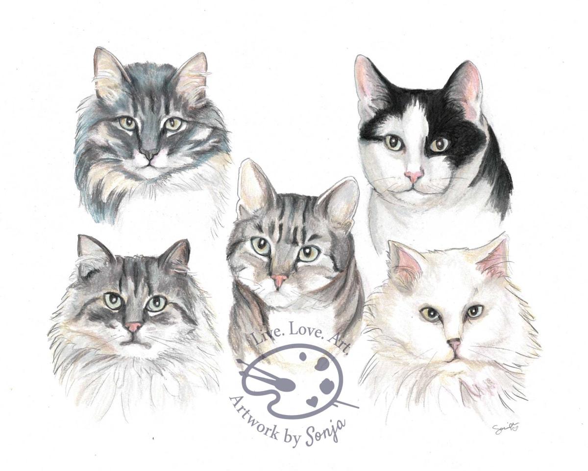 Cat Family Portrait by Sonja Petersen