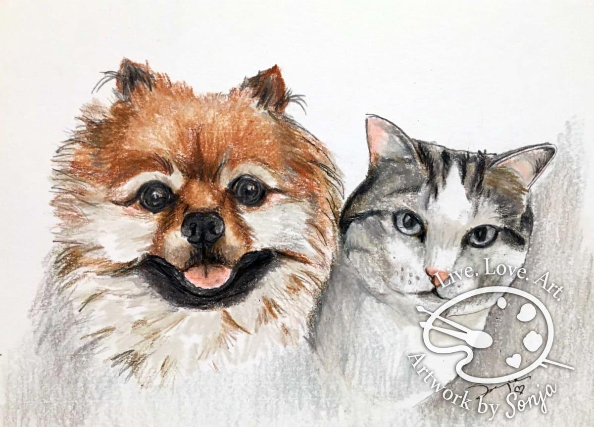 Dog and Cat Portrait