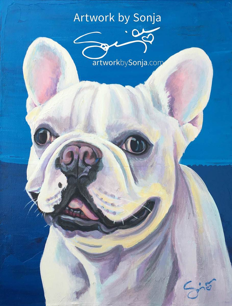 Frenchie on Canvas by Sonja Petersen