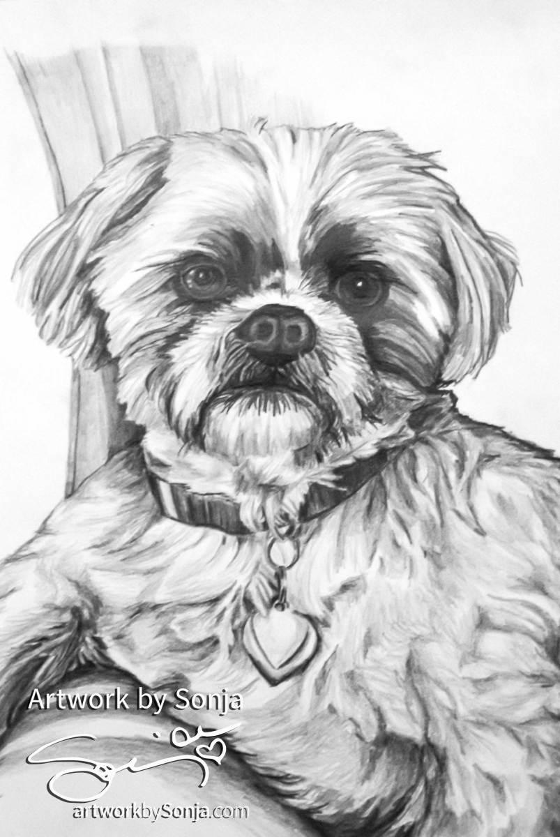 Westie Pet Portrait by Sonja by Sonja Petersen