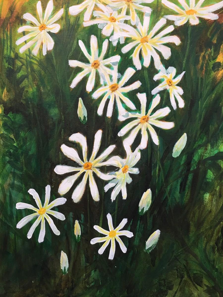 Daisies#3