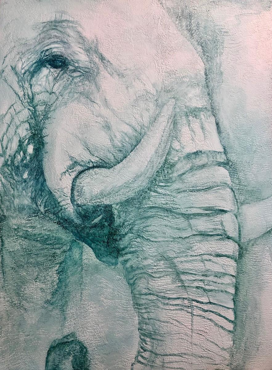 Harmony by Tabitha Benedict