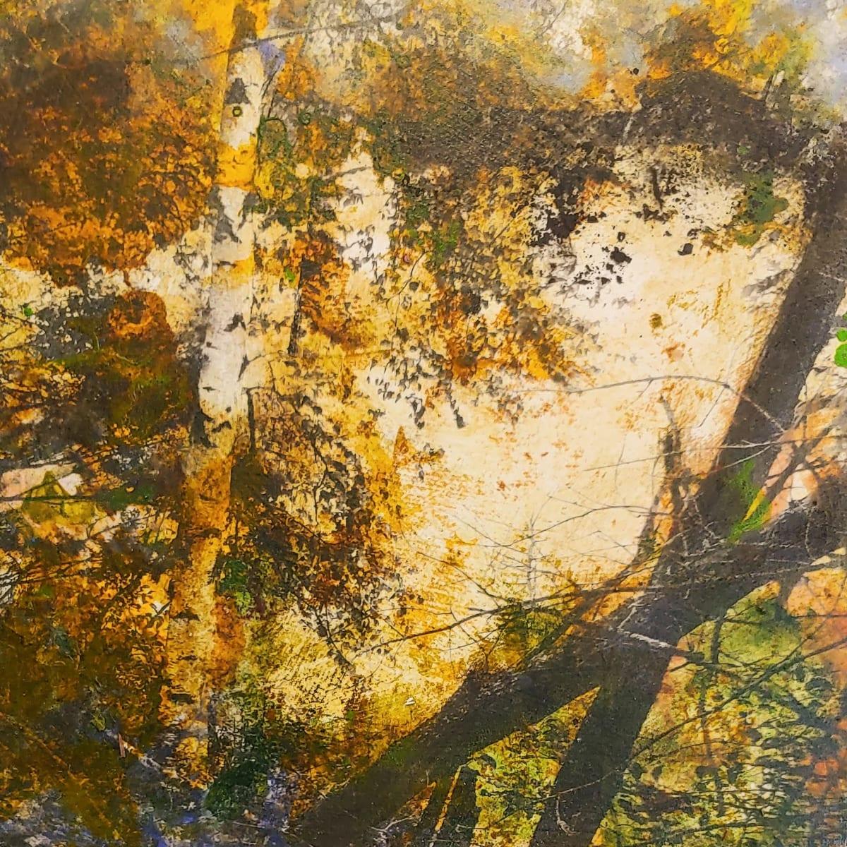 Toward the South Ridge by Mary Mendla