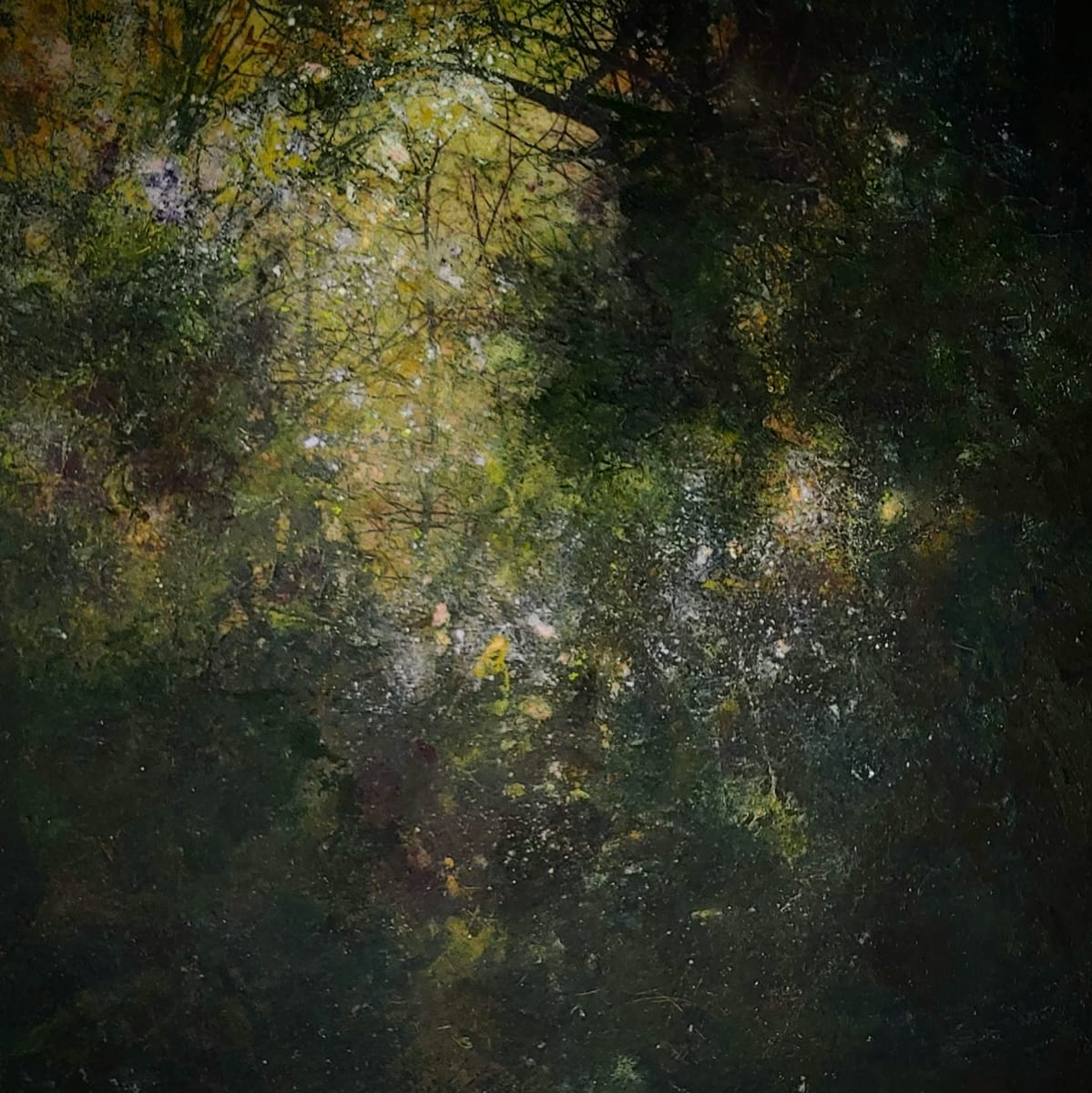 When the Fairies Come Out to Dance by Mary Mendla