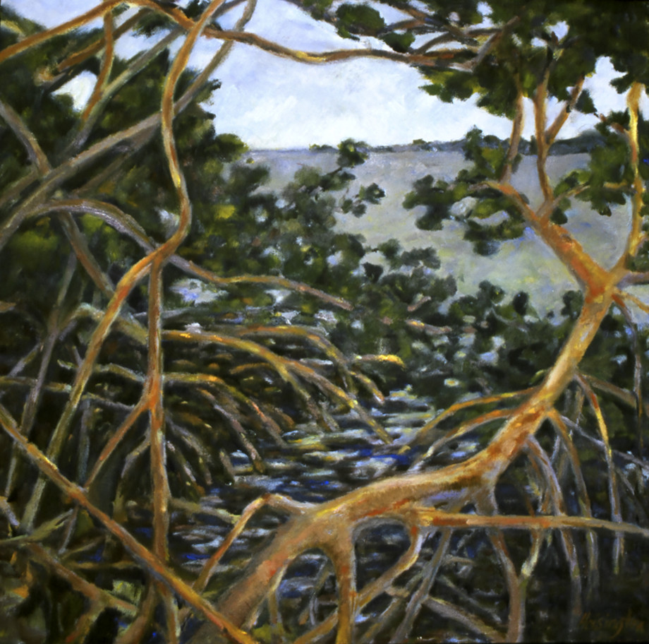 Mangroves by Kit Hoisington