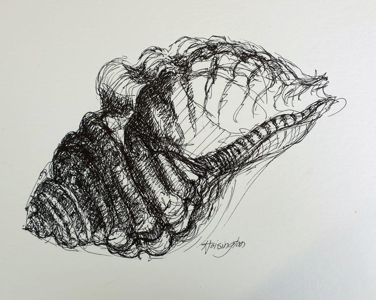 Narrabeen Shell by Kit Hoisington