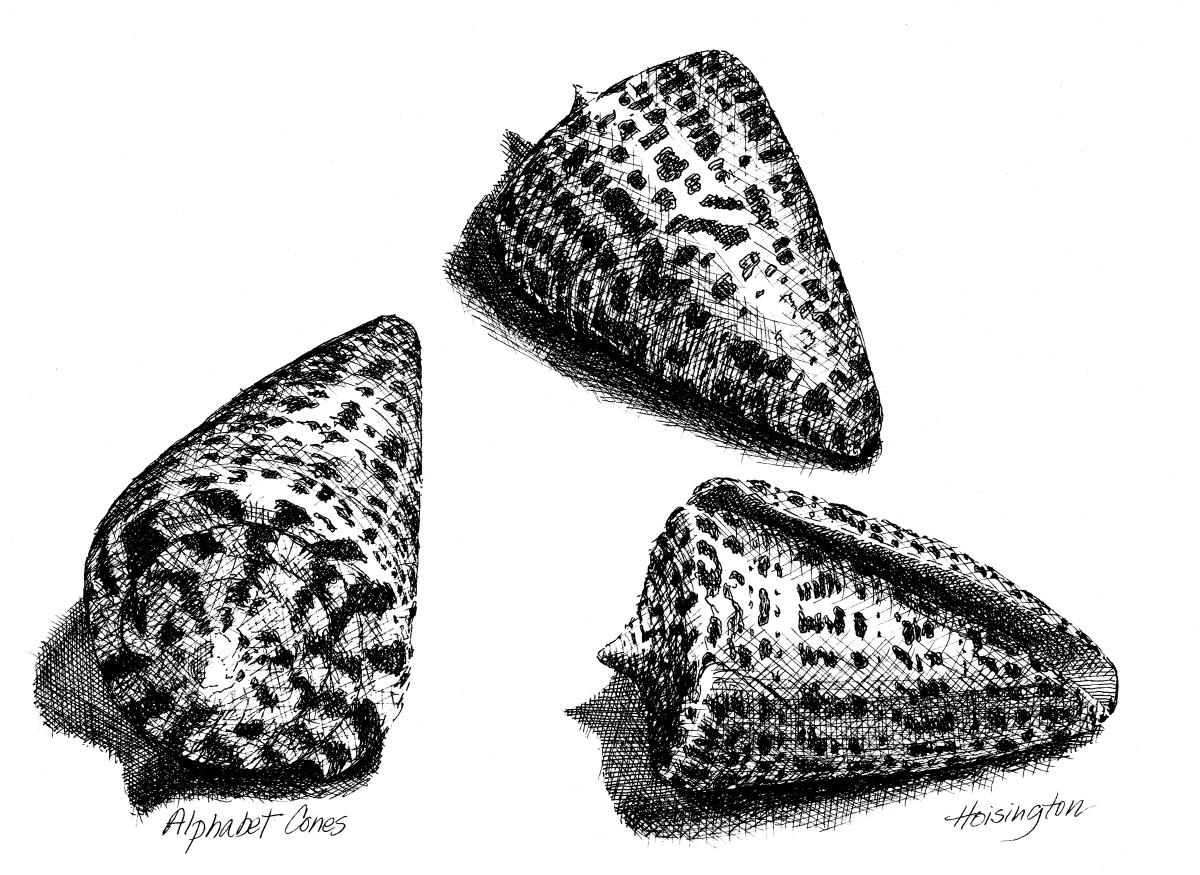 Alphabet Cones by Kit Hoisington