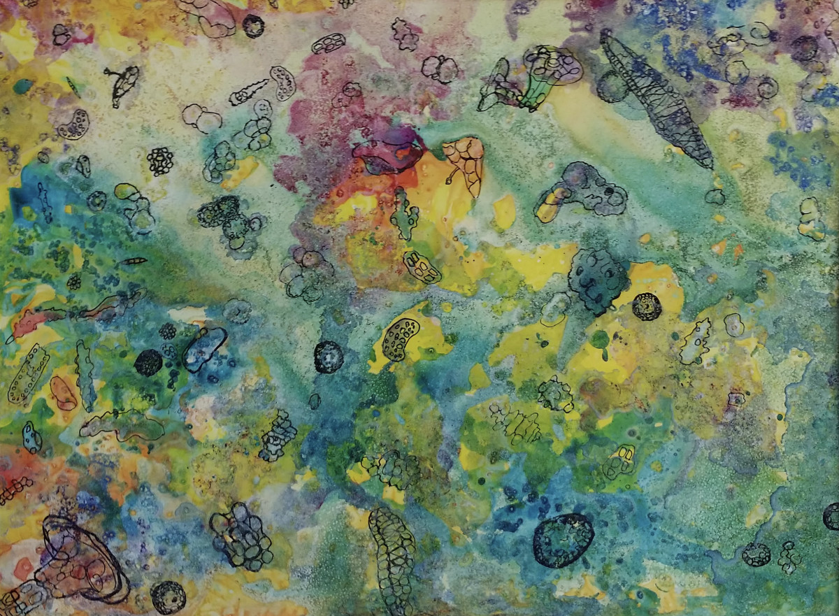 Microbial Patterns