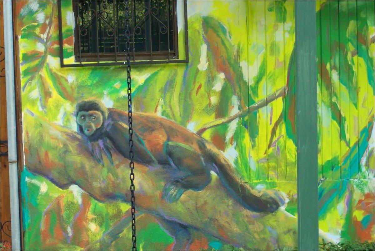 Mar Y Bosque Congo By Jeannina Blanco Artwork Archive