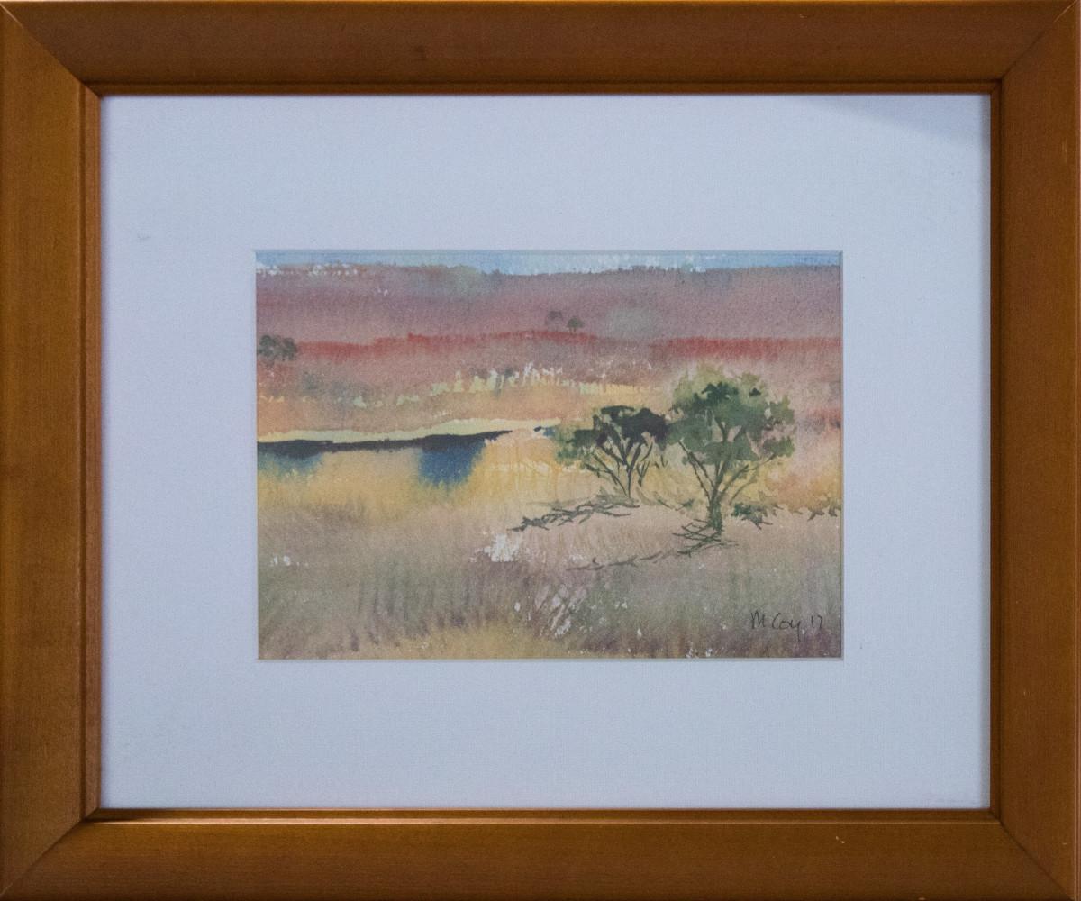 Nullarbor Plain 8