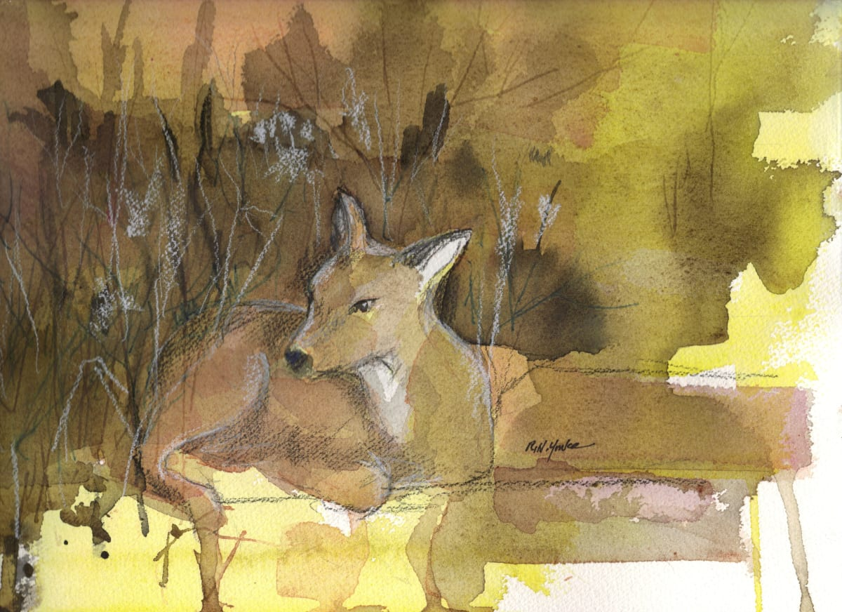 The Fawn by Robert Yonke
