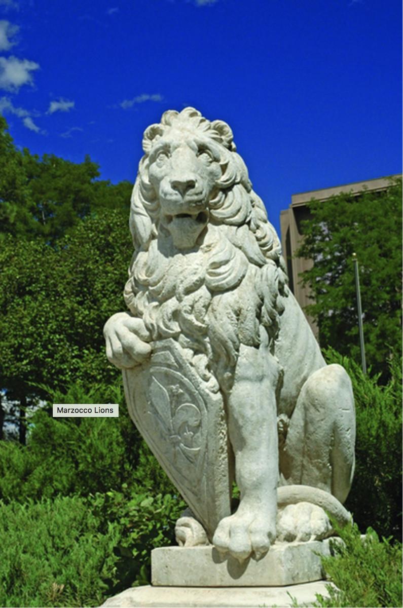 Marzocco Lion