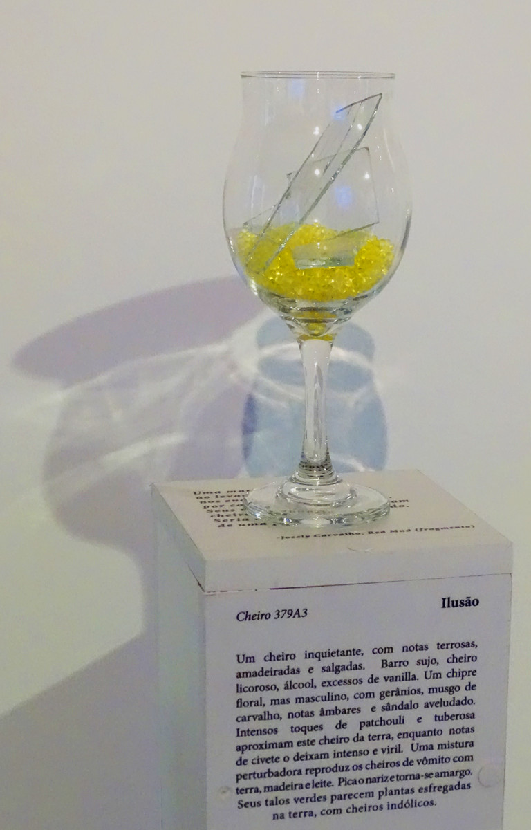 Smell of Illusion | Cheiro de Ilusão by Josely Carvalho