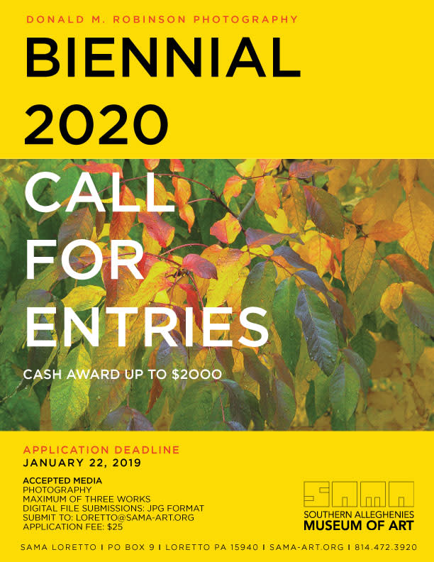 Donald M. Robinson Photography Biennial 2020