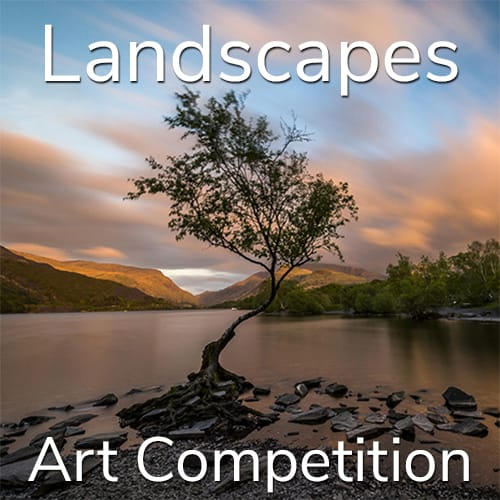 "10th Annual ""Landscapes"" Online Art Competition"