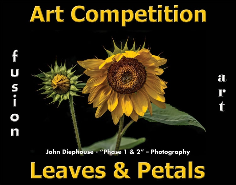 6th Annual Leaves & Petals Art Competition