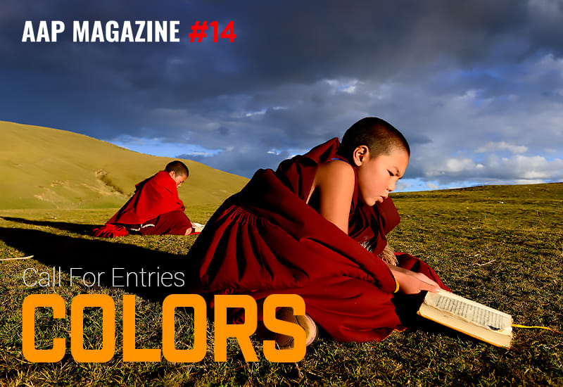 AAP Magazine #14 Colors