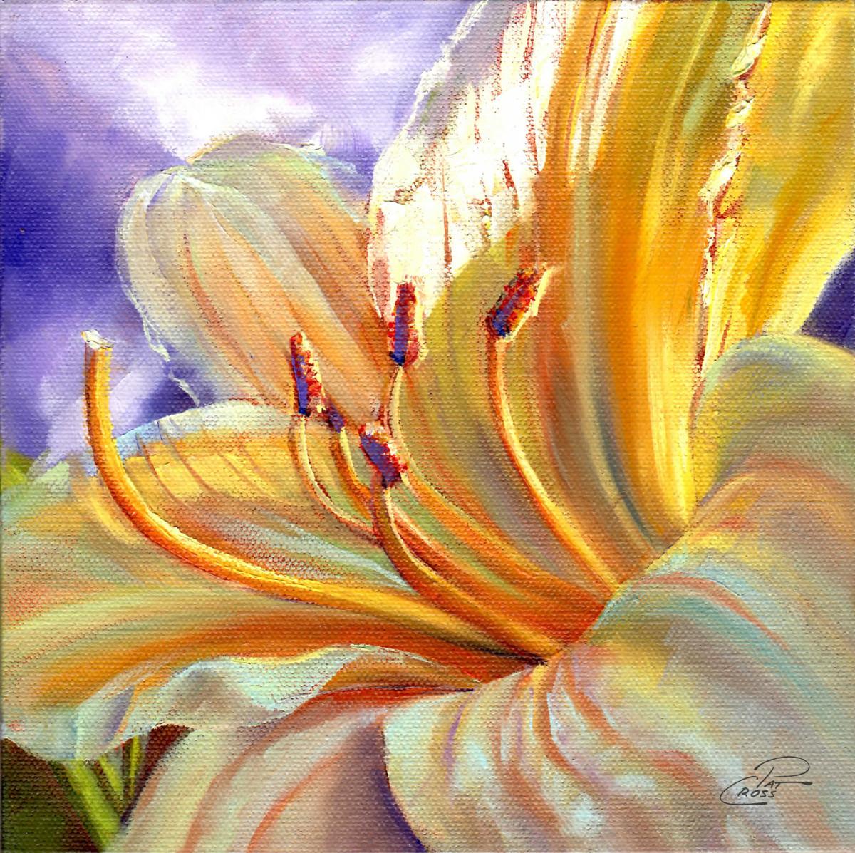 Yellow Stella by Pat Cross