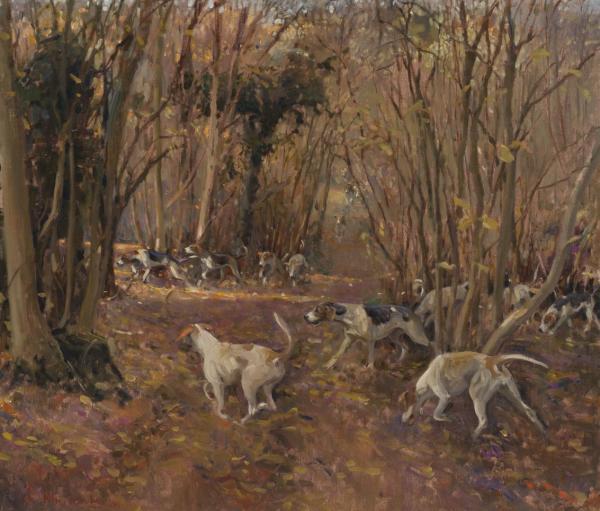 H.H. Hounds near Warthen