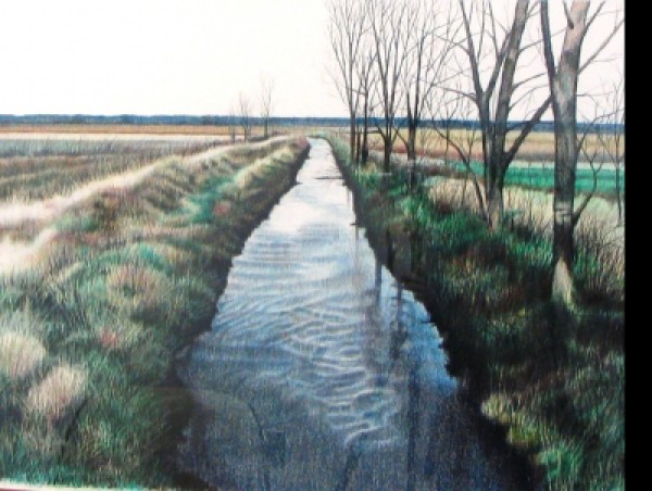 Ripples in the Lowlands