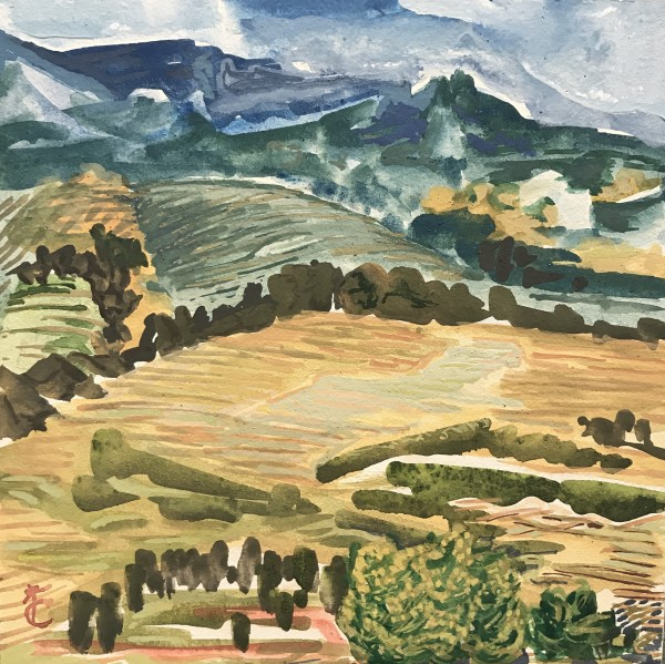 142 - The Valley Edge - Wine Country VI
