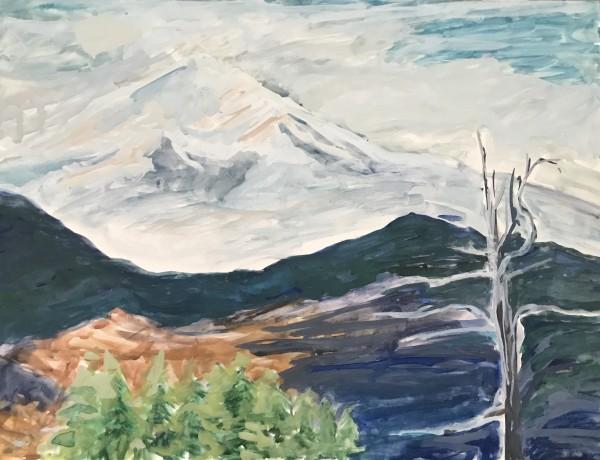 520- Mon Mont Sainte-Victoire I / Mt Shasta 3