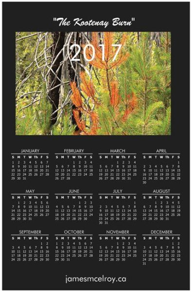 Kootenay Burn Calendar 2017 - 1 - Summer Orange
