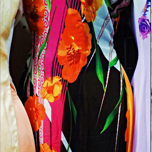 Concert in Colour - Silk Dress China Town LA 2018