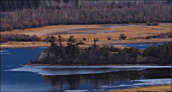 Wetlands in Blue #2, Wilmer B.C. 2018