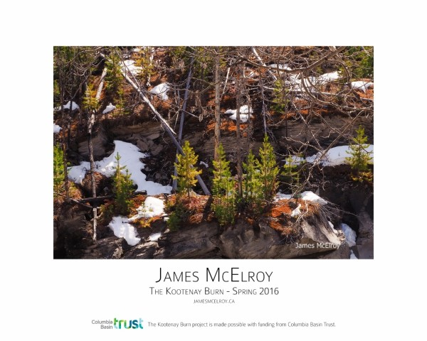 Kootenay Burn - A Four Seasons Framed Poster Series - Spring