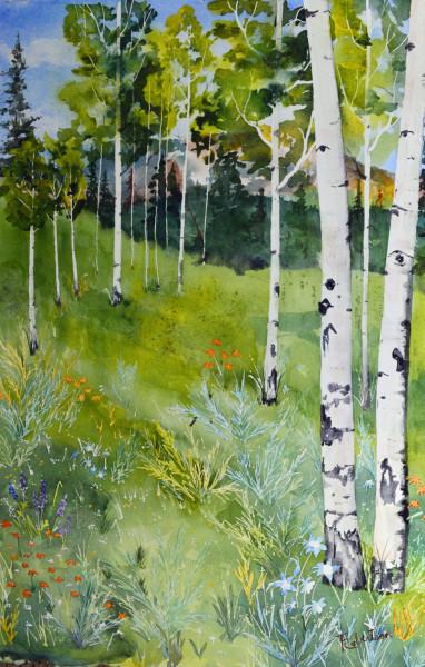 Aspen & Wildflowers