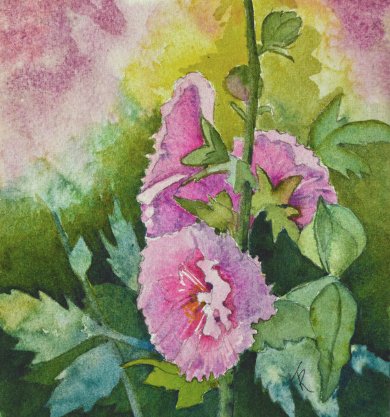 """Hollyhock Passion"""