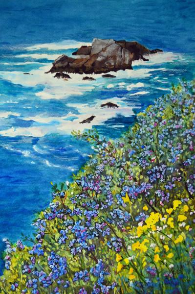 Pacific Coast Wildflowers