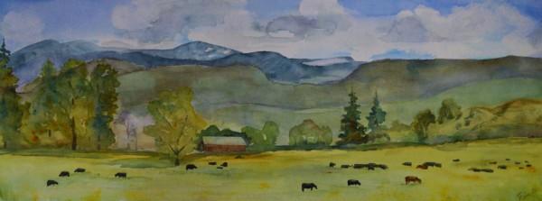 Ranch Impressions