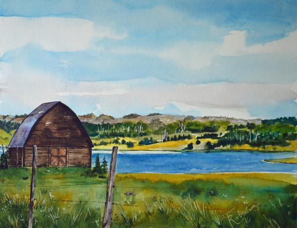 Steamboat Lake Summer