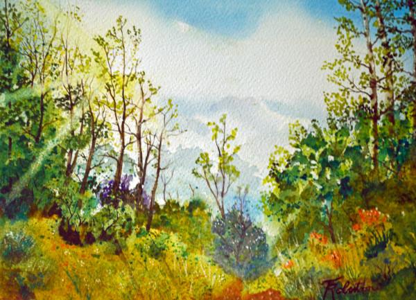 Sunlite Hillside