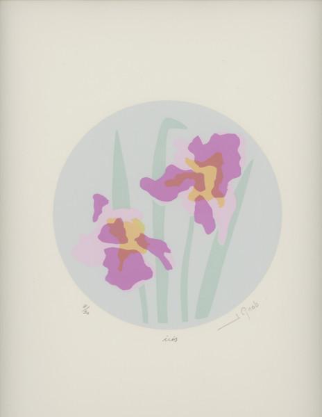 Iris by J. Gnob
