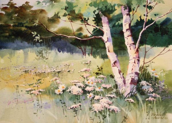 Meadow & Birch