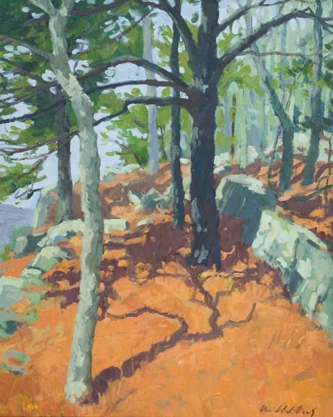 White Rock Pine