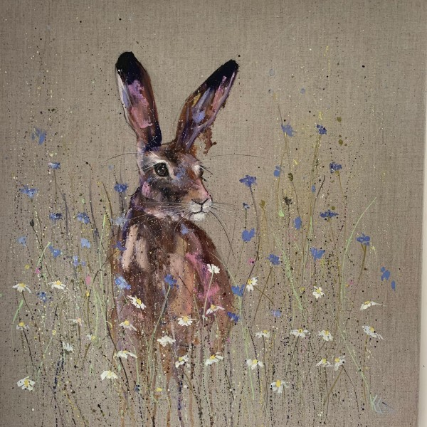Hare in the cornflowers and the daisies