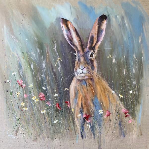 Misty morning hare