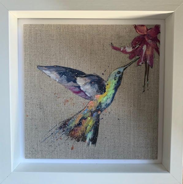 Little hummingbird
