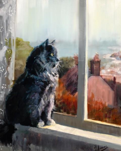 Cornwall Cat