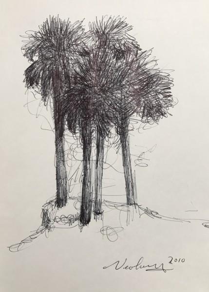 St. Pete Four Palms