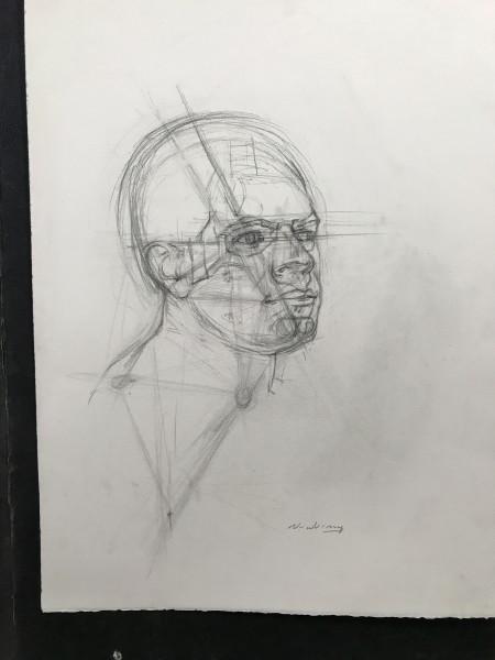 Finding Landmarks, Portrait Triangulation