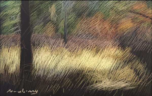 Newberry, Saunders Meadow, 2017, pastel