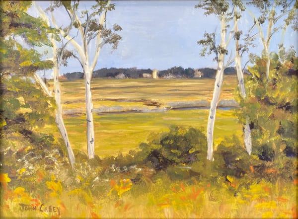 Marsh View in August
